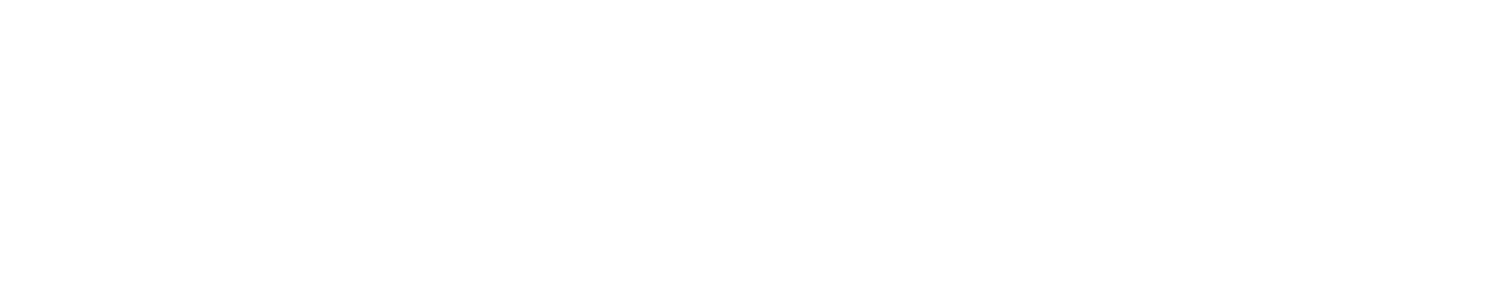 Dynamics CRM Experience
